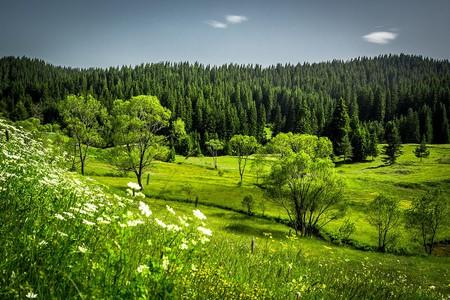 The Rhodope Mountains | © Nina Staykova/WikiCommons