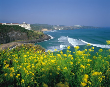 Jeju Island | © KoreaNet / Korean Culture and Information Service/Wikimedia Commons