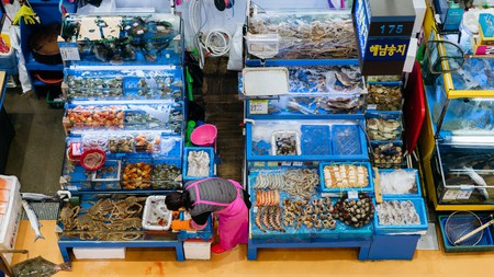 Visiting the Noryangjin Fish Market is a highlight on any trip to Seoul