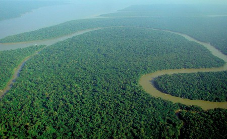 Amazon rainforest | © lubasi/WikiCommons