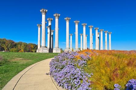 The U.S. National Arboretum   © Nicolas Raymond / Flickr