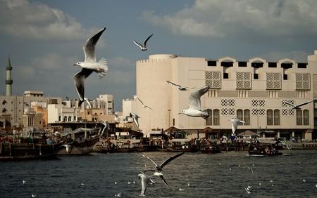 Dubai | © Milos Milosevic/Flickr