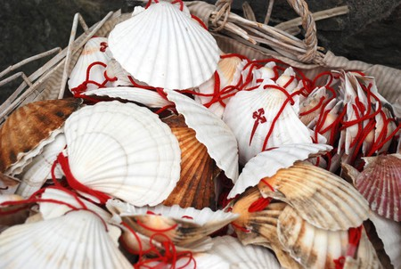 Camino shells | ©Dan Convey / Coffee & Caminos