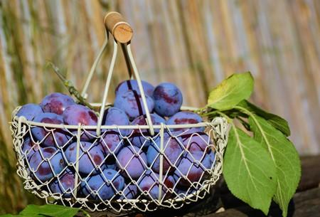 Finnish blueberries/ Pexels