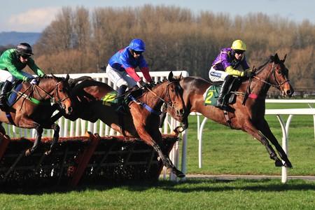 Horse races   © Paul / Flickr