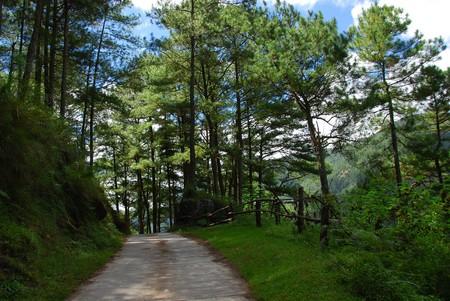 Path in Sagada | © Jojo Nicdao / Flickr