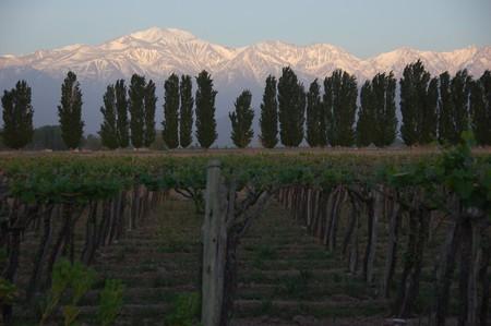 Sunrise in Mendoza | © Tony Bailey/Flickr