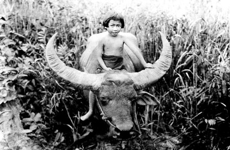 CHANG: A DRAMA OF THE WILDERNESS, Nah, 1927
