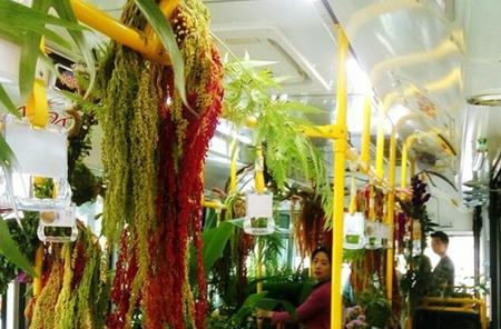 Forest Bus | © kathi_durden / Instagram