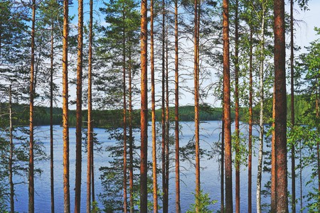 Finnish lakeside |© Public domain / Pixabay