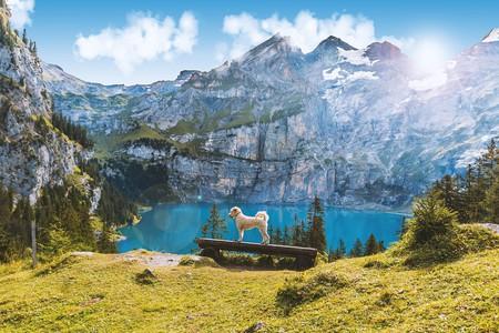 Lake Oeschinen in summer | © Felix_Broennimann/ Pixabay