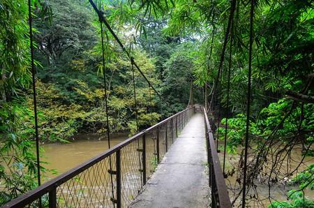 A wooden bridge in Ijesha, Nigeria |© Jbdodane / Wikimedia