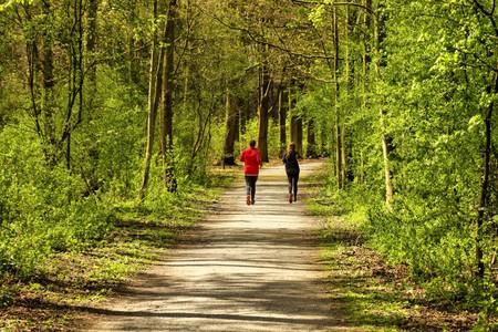 Running   © Edwin van Buuringen/Flickr
