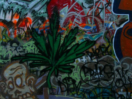 Marijuana Art   © Jason Taellious / Flickr