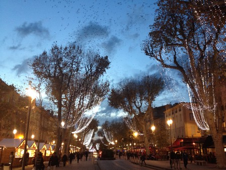 The iconic Cours Mirabeau in Aix en Provence   © Alex Ledsom