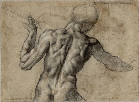 Anatomy study by Michelangelo | Wikimedia Commons