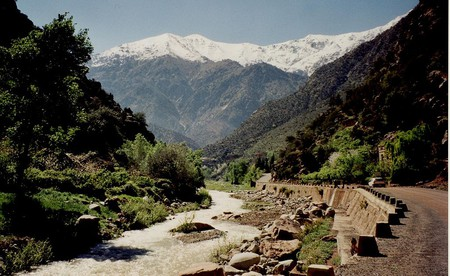 Snow-topped mountains behind the Ourika River   © jeanarp/Wikimedia Commons
