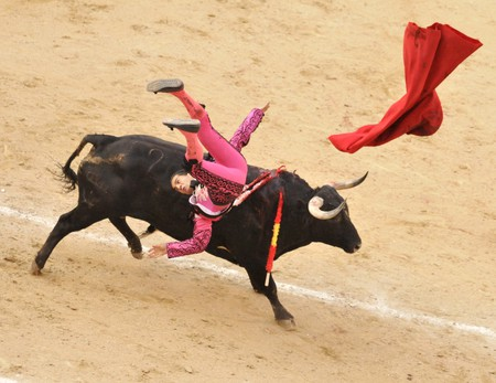 A bull tossed bullfighter (toreros) during a bullfight (Corrida) at a bullfight in Madrid.© Bumble Dee/Shutterstock