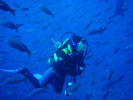 Diving in the Galapagos | © Anthony Patterson /Flickr