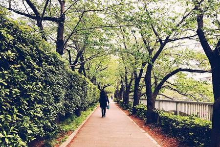 Meguro, Tokyo | © Akiko Yokoyama/Flickr