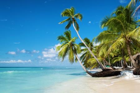 Caribbean beach in Saona island, Dominican Republic | © Federico Rostagno / Shutterstock
