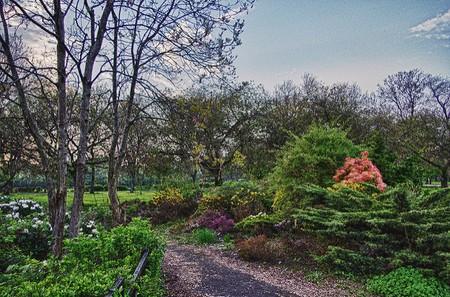 Richmond Park   © thatBilly/Flickr