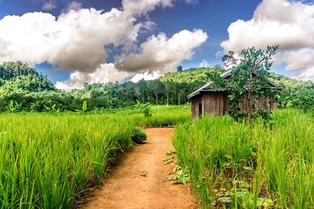 Cambodian countryside   ©Scott Biales/ Shutterstock.com
