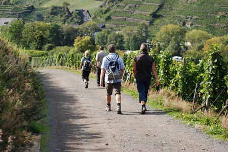 Hikers explore the vineyards of the Ahrtal | © Alan Gordine/Shutterstock