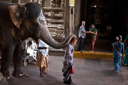 Elephant blessing at Meenakshi Amman Temple