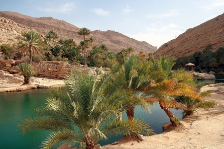 Wadi Bani Khalid   © Nicolas Rénac / Flickr