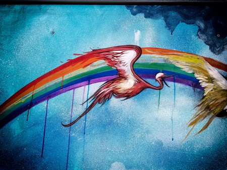 Rainbow Birds | © tux0racer/Flickr