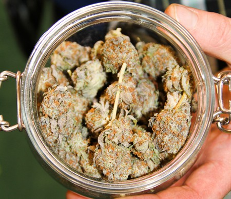 Untitled   © Cannabis Culture/Flickr