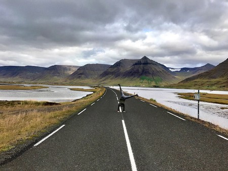 The West Fjords are a road less travelled but no less spectacular | © Nikki Vargas