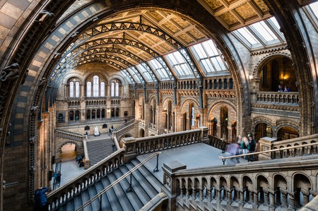 Natural History Museum | © Barney Moss/Flickr