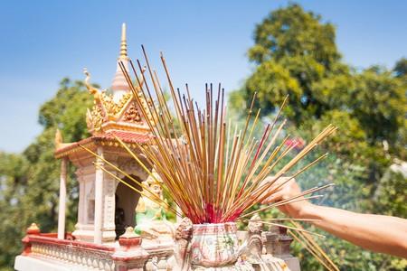   © Tepikina Nastya/ Shutterstock.com
