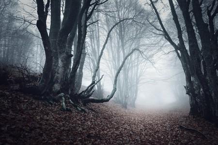 Spooky travels   © Denis Belitsky / Shutterstock