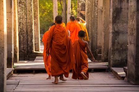 | © Karnnapus/ Shutterstock.com
