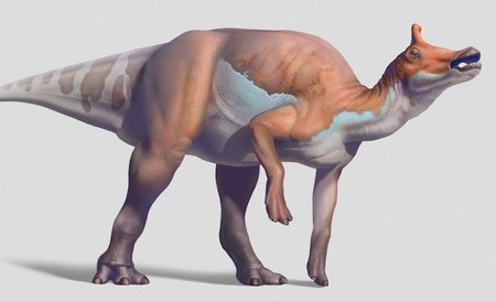 Augustynolophus morrisi | Courtesy of Natural History Museum of Los Angeles County