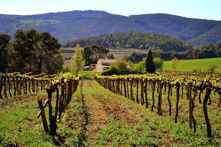 Penedes wine region, Catalonia, Spain | © Angela Llop / Flickr