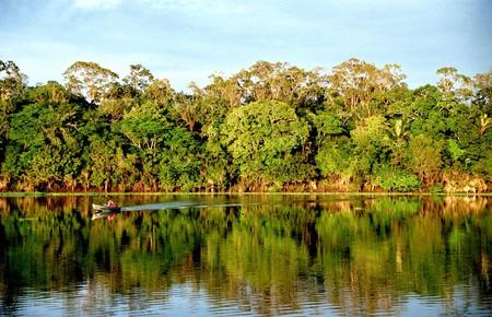 Amazonia, Brasil   © Andre Deak / Flickr