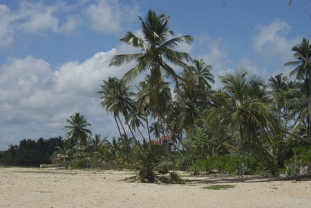 Tangalle Beach on the south coast of Sri Lanka | © claire rowland / Flickr