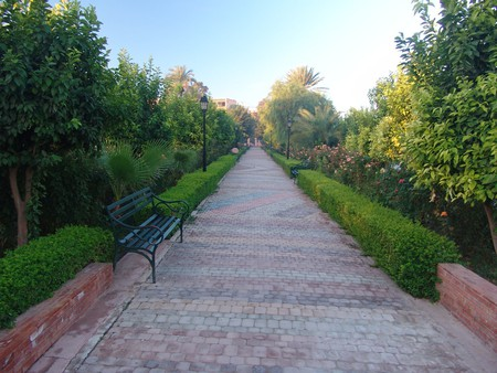 Scenic Gardens in Marrakech | ©  Bryce Edwards / Flickr