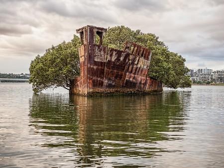 SS Ayrfield   © Marc Dalmulder/Flickr