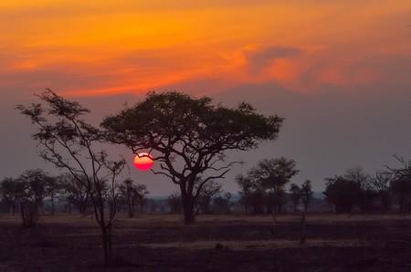 Sunset over the Serengeti | © Anita Ritenour/Flickr