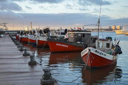 Port in Punta del Este