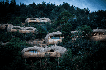 Bisate Lodge   © Crookes & Jackson / Courtesy of Wilderness Safaris