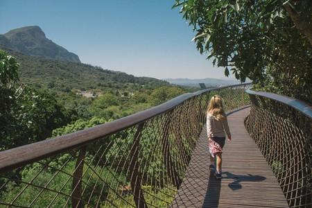 Boomslang canopy walkway | © Jessica Stafford/Culture Trip