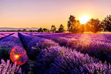 Provence | © Leonard Cotte/Unsplash
