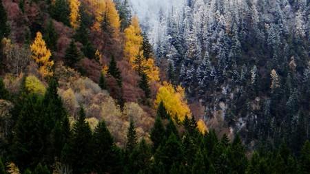 Autumn in Jiuzhaigou | © tcy3282 / Flickr