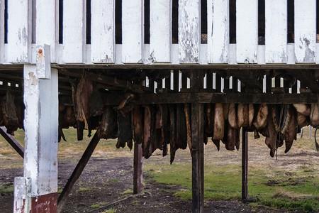 Fermented shark | © Austin Matherne/Flickr